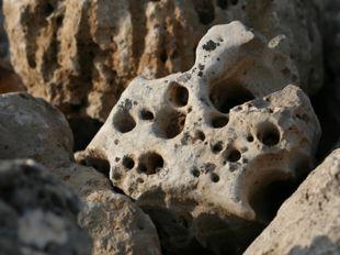 Dark gray stone with holes